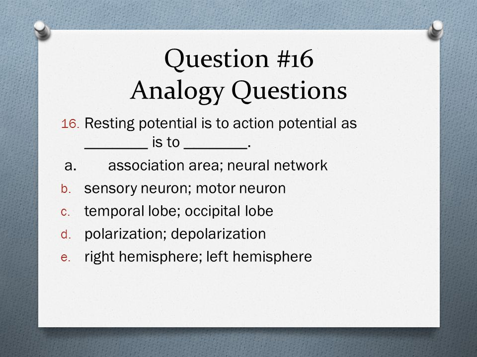 Question #16 Analogy Questions 16.