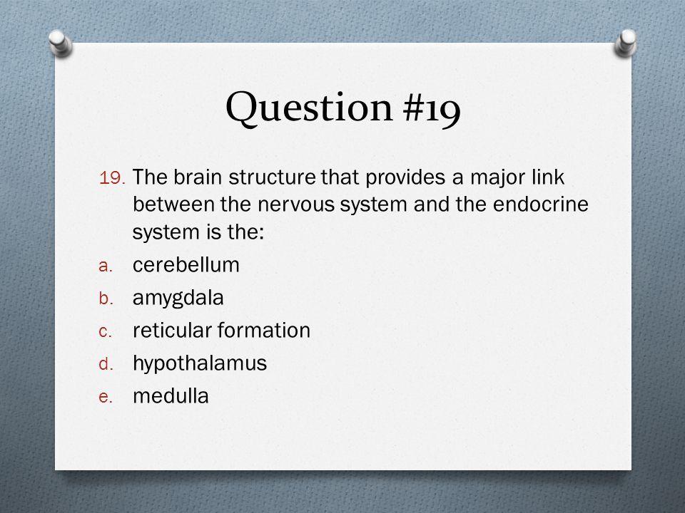 Question #19 19.