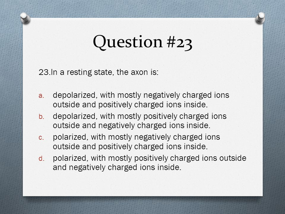 Question #23 23.In a resting state, the axon is: a.