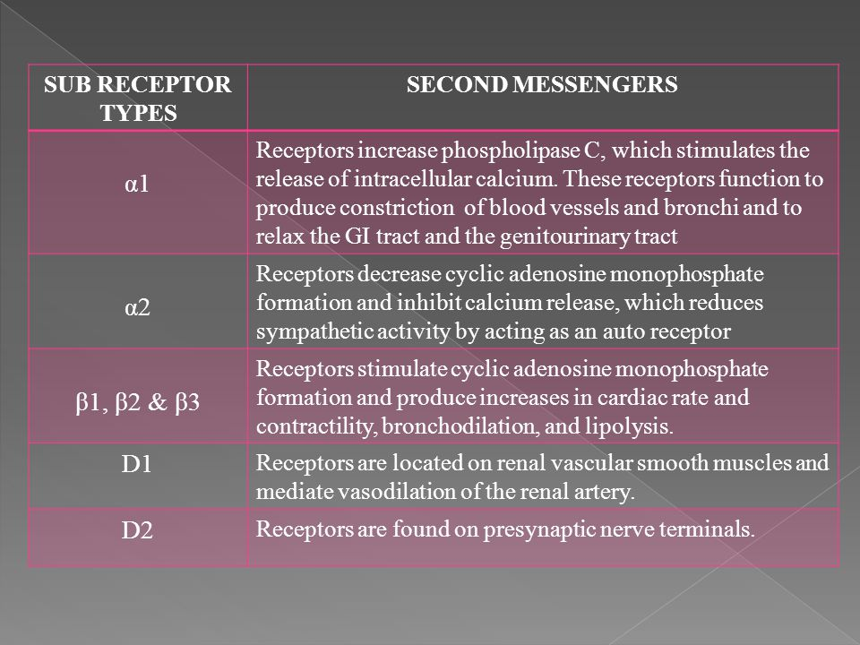SUB RECEPTOR TYPES SECOND MESSENGERS α1α1 Receptors increase phospholipase C, which stimulates the release of intracellular calcium. These receptors f