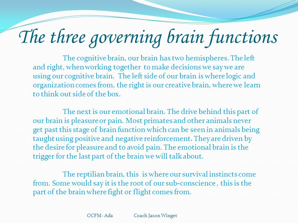 The three governing brain functions OCFM- Ada Coach Jason Winget The cognitive brain, our brain has two hemispheres. The left and right, when working