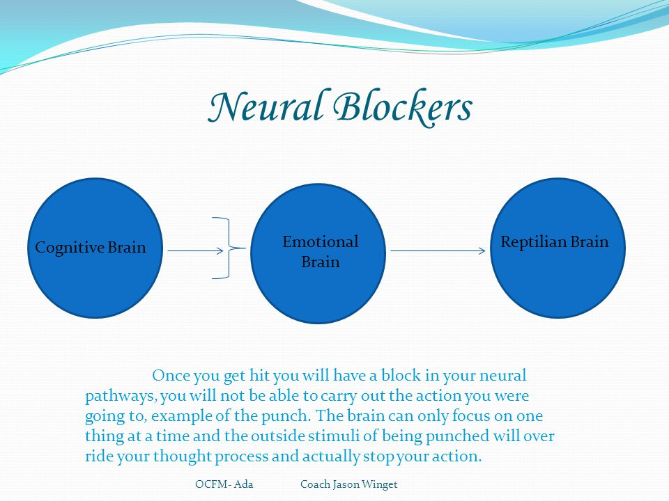 Neural Blockers OCFM- Ada Coach Jason Winget Reptilian Brain Cognitive Brain Emotional Brain Once you get hit you will have a block in your neural pat