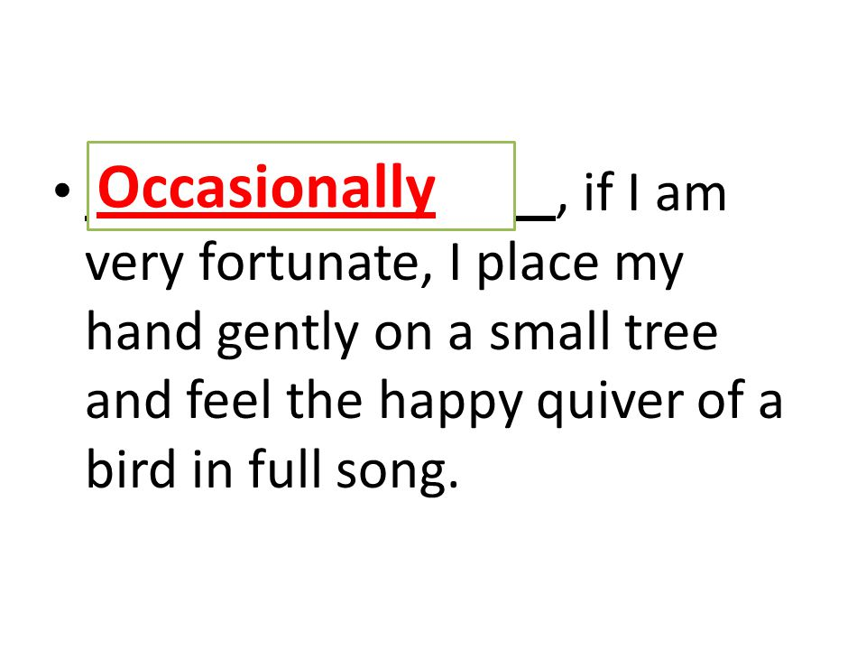 O, if I am very fortunate, I place my hand gently on a small tree and feel the happy quiver of a bird in full song.