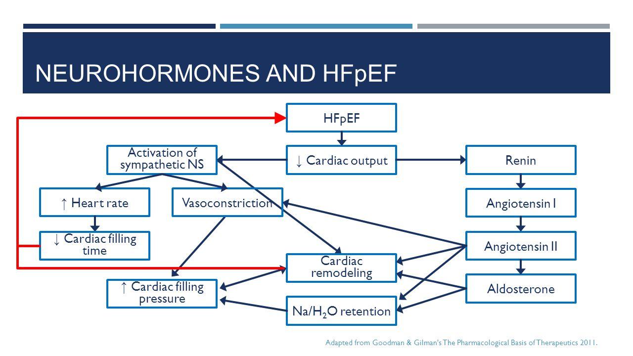 NEUROHORMONES AND HFpEF HFpEF ↓ Cardiac output Activation of sympathetic NS Renin Angiotensin I Vasoconstriction ↑ Heart rate Angiotensin II Aldostero