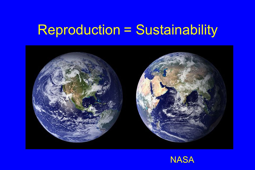 Reproduction = Sustainability NASA