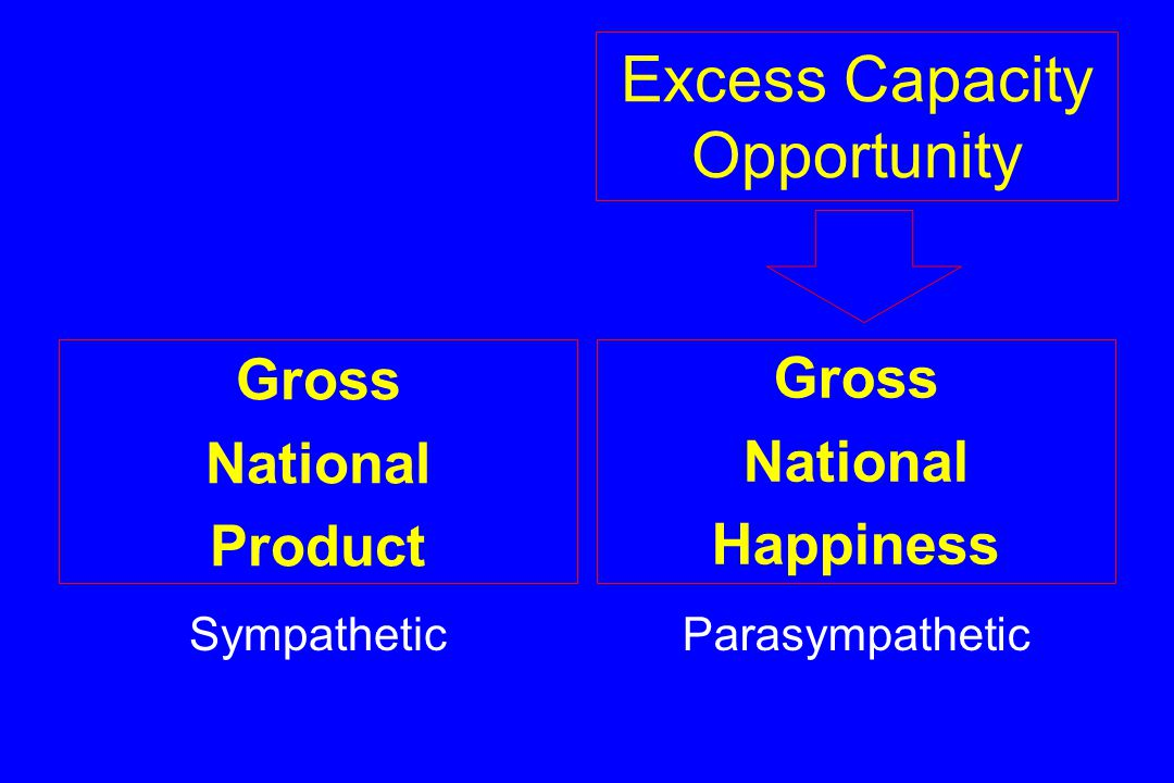 Excess Capacity Opportunity Gross National Product Sympathetic Gross National Happiness Parasympathetic