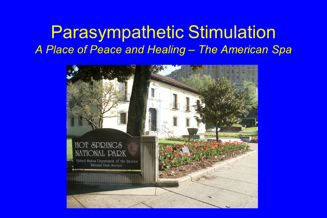 Parasympathetic Stimulation A Place of Peace and Healing – The American Spa