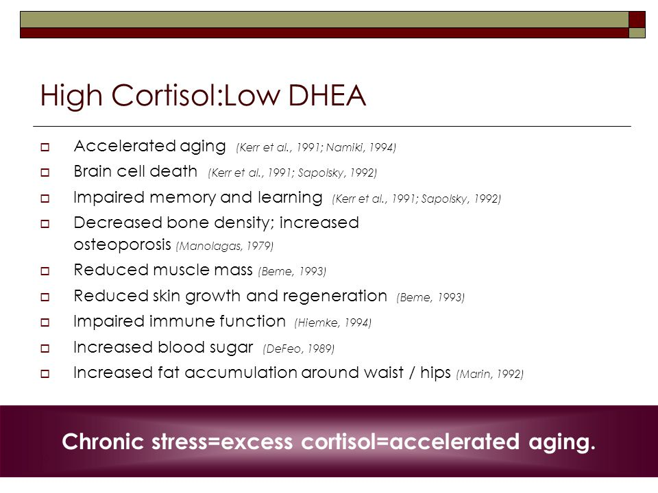 10 High Cortisol:Low DHEA  Accelerated aging (Kerr et al., 1991; Namiki, 1994)  Brain cell death (Kerr et al., 1991; Sapolsky, 1992)  Impaired memory and learning (Kerr et al., 1991; Sapolsky, 1992)  Decreased bone density; increased osteoporosis (Manolagas, 1979)  Reduced muscle mass (Beme, 1993)  Reduced skin growth and regeneration (Beme, 1993)  Impaired immune function (Hiemke, 1994)  Increased blood sugar (DeFeo, 1989)  Increased fat accumulation around waist / hips (Marin, 1992) Chronic stress=excess cortisol=accelerated aging.