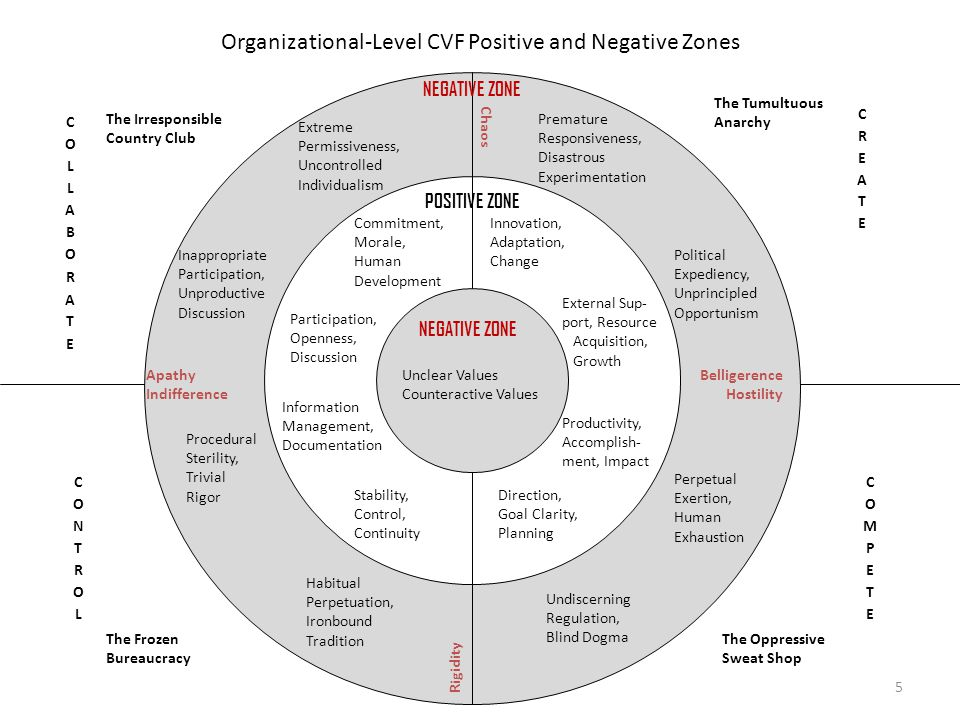 Organizational-Level CVF Positive and Negative Zones Direction, Goal Clarity, Planning Productivity, Accomplish- ment, Impact Unclear Values Counterac