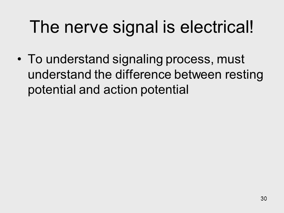 30 The nerve signal is electrical.