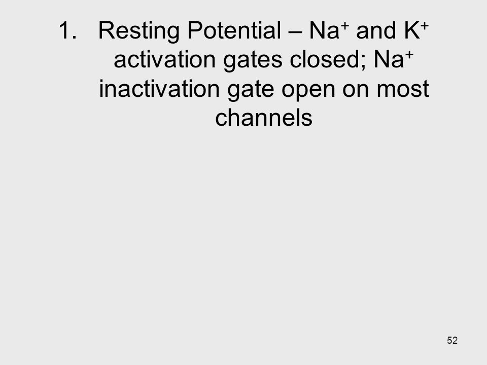 52 1.Resting Potential – Na + and K + activation gates closed; Na + inactivation gate open on most channels