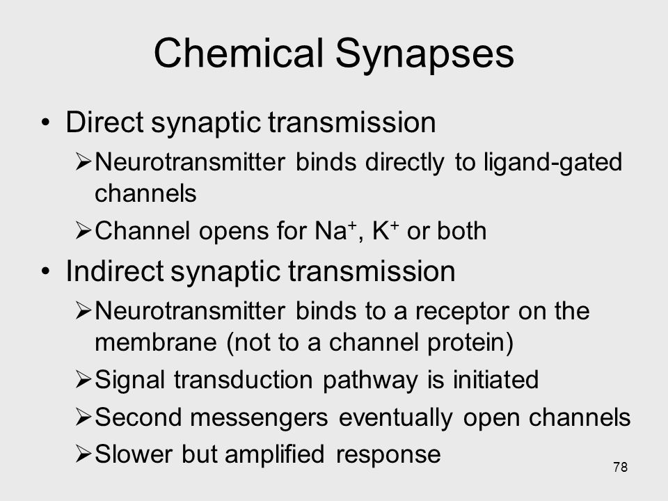 78 Chemical Synapses Direct synaptic transmission  Neurotransmitter binds directly to ligand-gated channels  Channel opens for Na +, K + or both Ind