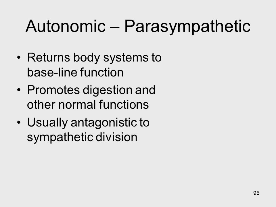 95 Autonomic – Parasympathetic Returns body systems to base-line function Promotes digestion and other normal functions Usually antagonistic to sympat