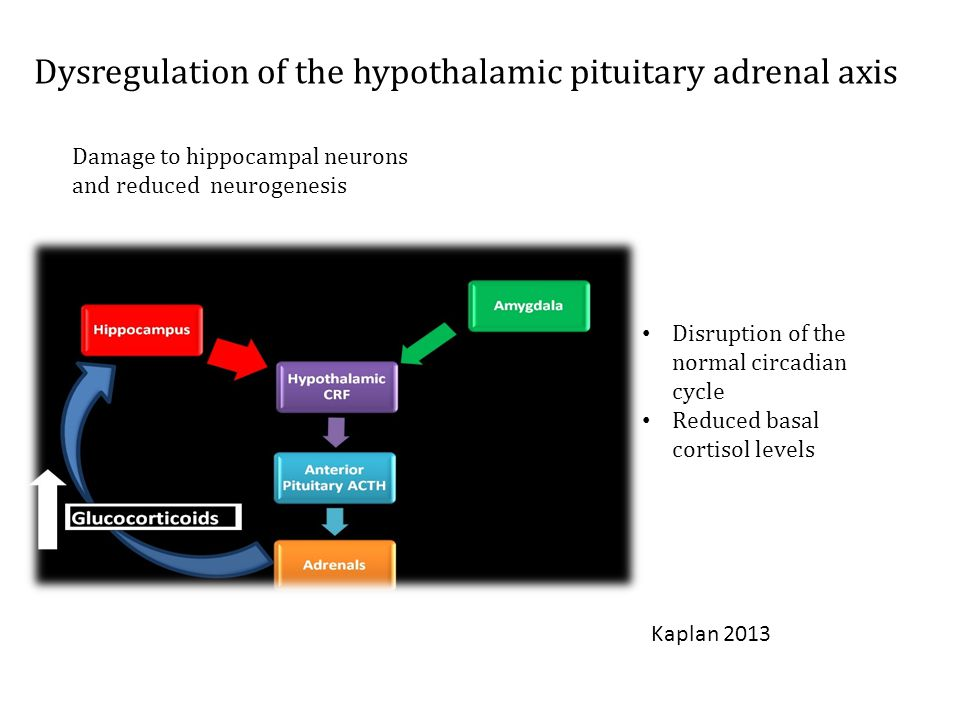 Disruption of the normal circadian cycle Reduced basal cortisol levels Damage to hippocampal neurons and reduced neurogenesis Dysregulation of the hypothalamic pituitary adrenal axis Kaplan 2013