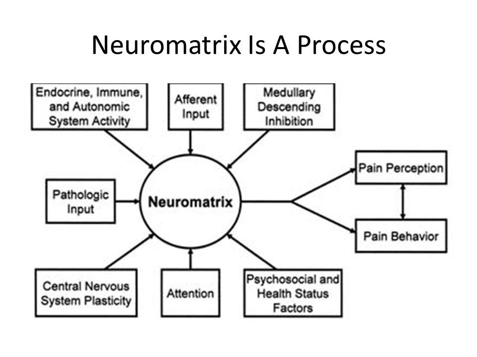 Neuromatrix Is A Process