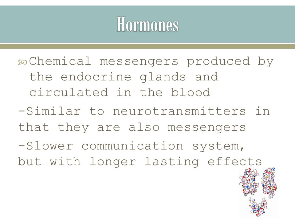  Chemical messengers produced by the endocrine glands and circulated in the blood -Similar to neurotransmitters in that they are also messengers -Slower communication system, but with longer lasting effects
