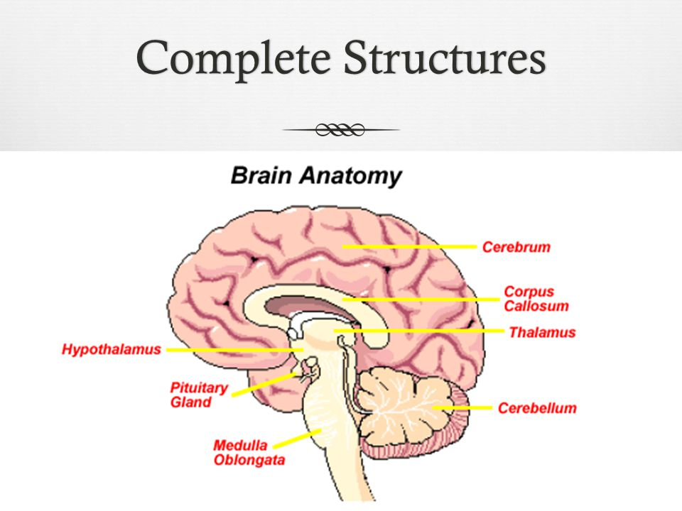 Complete StructuresComplete Structures