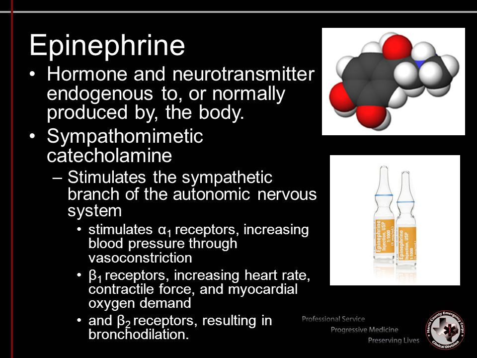 Epinephrine Hormone and neurotransmitter endogenous to, or normally produced by, the body. Sympathomimetic catecholamine –Stimulates the sympathetic b