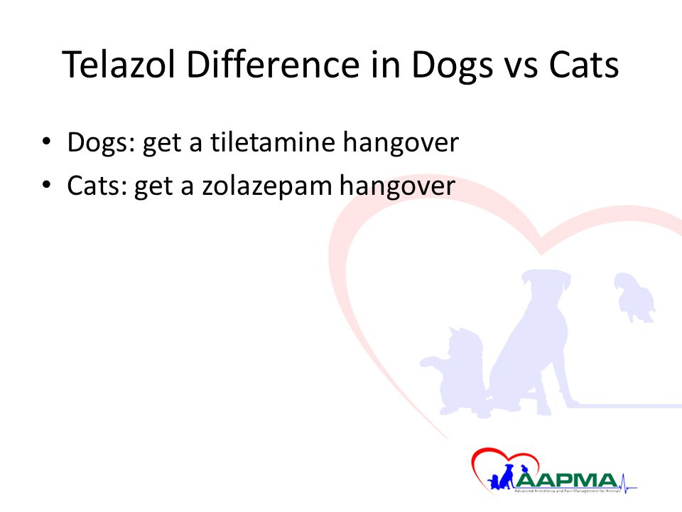 Telazol Difference in Dogs vs Cats Dogs: get a tiletamine hangover Cats: get a zolazepam hangover