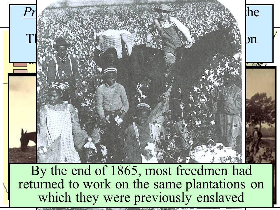 Sharecropping Problem: families accumulated debt to the landowner before their crop was sold; This cyclical process led to mortgages on future crops (crop lien system) By the end of 1865, most freedmen had returned to work on the same plantations on which they were previously enslaved