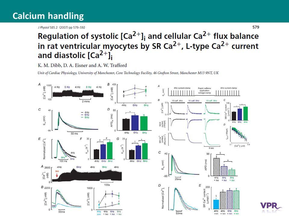 ___ __ ___ ____ __ _________ _______ __ _____ _______ Calcium handling