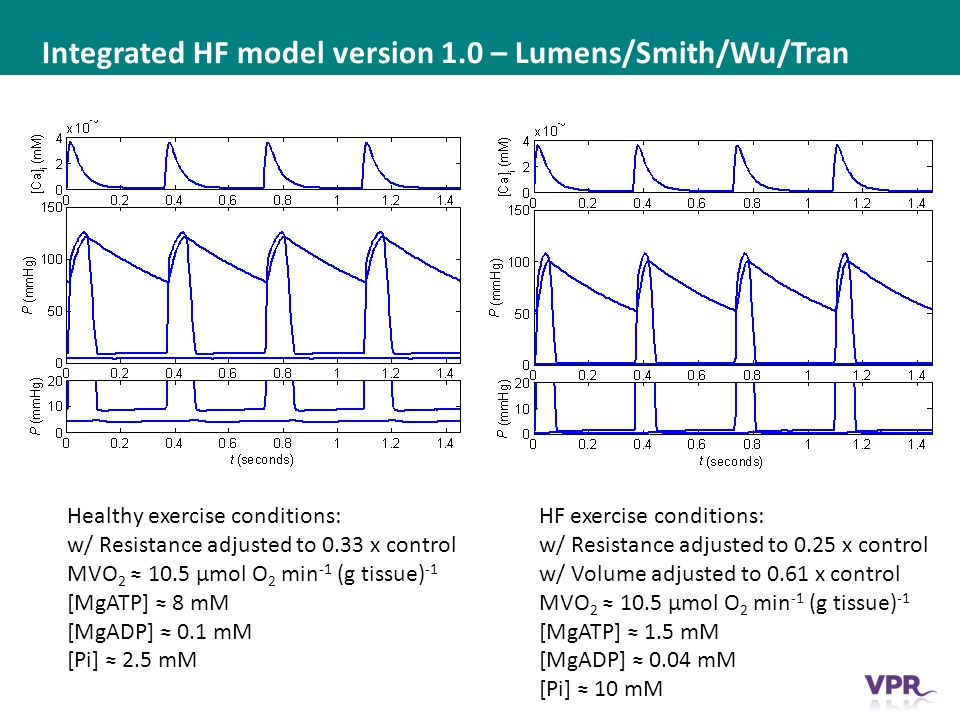 ___ __ ___ ____ __ _________ _______ __ _____ _______ Integrated HF model version 1.0 – Lumens/Smith/Wu/Tran Healthy exercise conditions: w/ Resistance adjusted to 0.33 x control MVO 2 ≈ 10.5 μmol O 2 min -1 (g tissue) -1 [MgATP] ≈ 8 mM [MgADP] ≈ 0.1 mM [Pi] ≈ 2.5 mM HF exercise conditions: w/ Resistance adjusted to 0.25 x control w/ Volume adjusted to 0.61 x control MVO 2 ≈ 10.5 μmol O 2 min -1 (g tissue) -1 [MgATP] ≈ 1.5 mM [MgADP] ≈ 0.04 mM [Pi] ≈ 10 mM