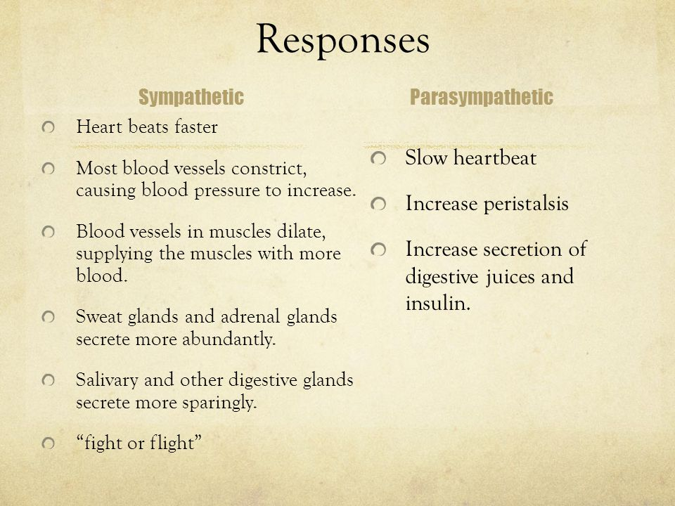Responses Sympathetic Heart beats faster Most blood vessels constrict, causing blood pressure to increase.