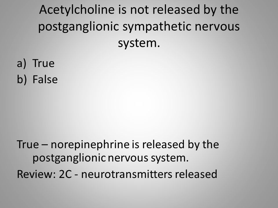 Acetylcholine is not released by the postganglionic sympathetic nervous system.