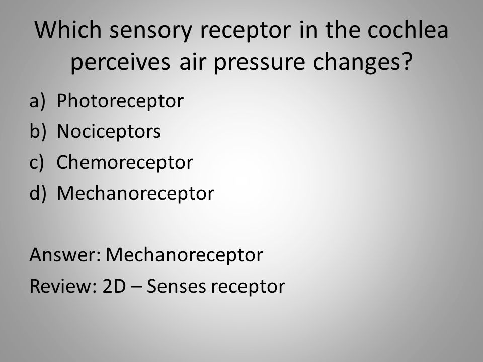 Which sensory receptor in the cochlea perceives air pressure changes.
