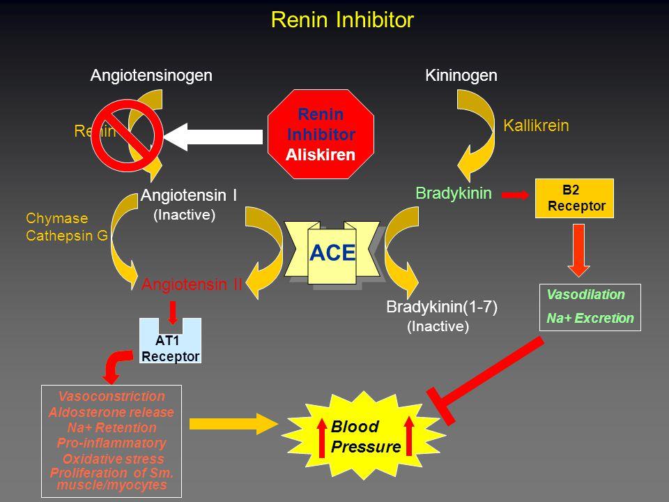 Renin Inhibitor ACE Kininogen Angiotensinogen Renin Kallikrein Angiotensin I (Inactive) Bradykinin B2 Receptor AT1 Receptor Angiotensin II Bradykinin(1-7) (Inactive) Blood Pressure Renin Inhibitor Aliskiren Vasodilation Na+ Excretion AT1 Receptor Vasoconstriction Aldosterone release Na+ Retention Pro-inflammatory Oxidative stress Proliferation of Sm.