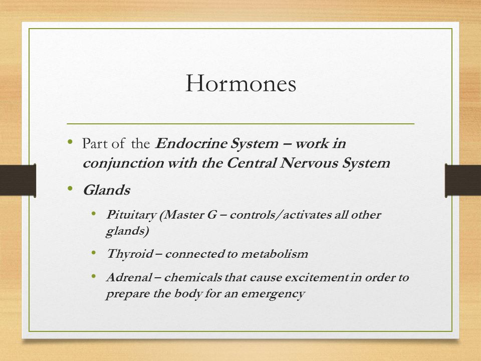 Hormones Part of the Endocrine System – work in conjunction with the Central Nervous System Glands Pituitary (Master G – controls/activates all other