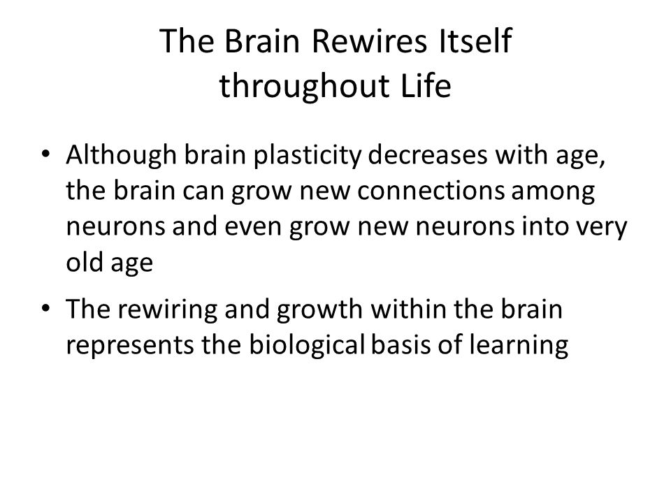 The Brain Rewires Itself throughout Life Although brain plasticity decreases with age, the brain can grow new connections among neurons and even grow new neurons into very old age The rewiring and growth within the brain represents the biological basis of learning