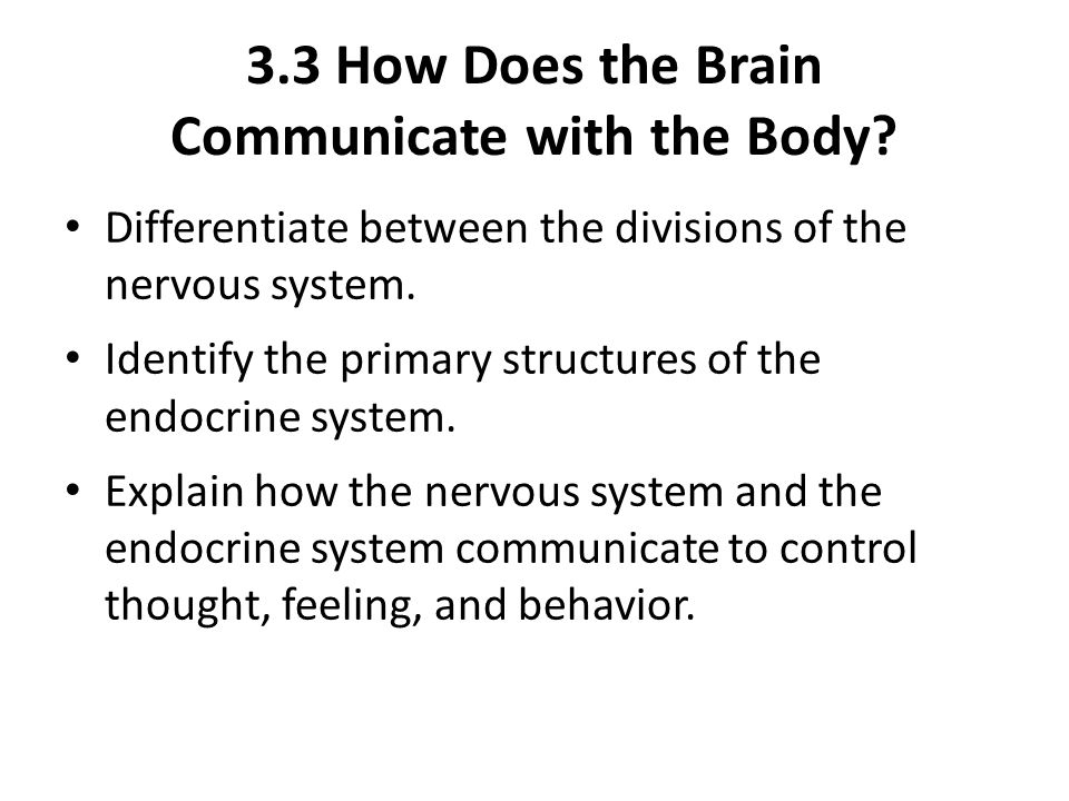 3.3 How Does the Brain Communicate with the Body.