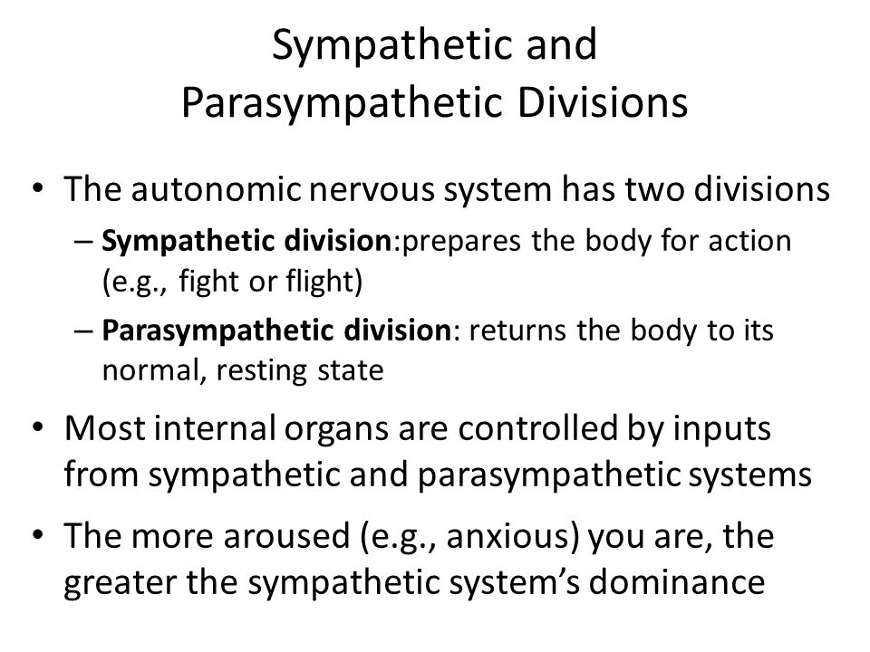 Sympathetic and Parasympathetic Divisions The autonomic nervous system has two divisions – Sympathetic division:prepares the body for action (e.g., fight or flight) – Parasympathetic division: returns the body to its normal, resting state Most internal organs are controlled by inputs from sympathetic and parasympathetic systems The more aroused (e.g., anxious) you are, the greater the sympathetic system's dominance