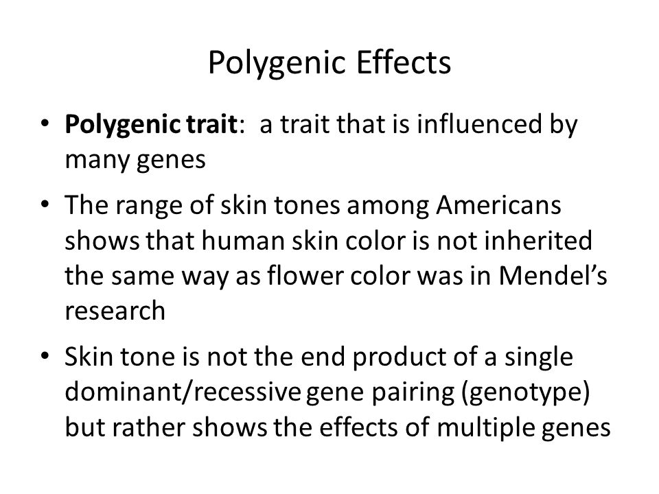 Polygenic Effects Polygenic trait: a trait that is influenced by many genes The range of skin tones among Americans shows that human skin color is not inherited the same way as flower color was in Mendel's research Skin tone is not the end product of a single dominant/recessive gene pairing (genotype) but rather shows the effects of multiple genes
