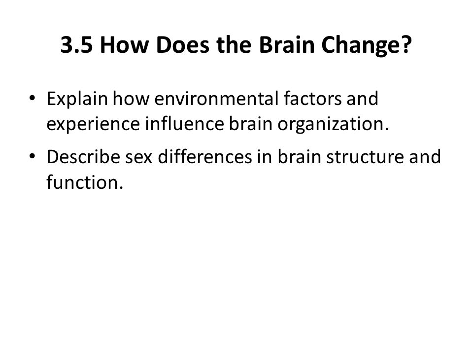 3.5 How Does the Brain Change.