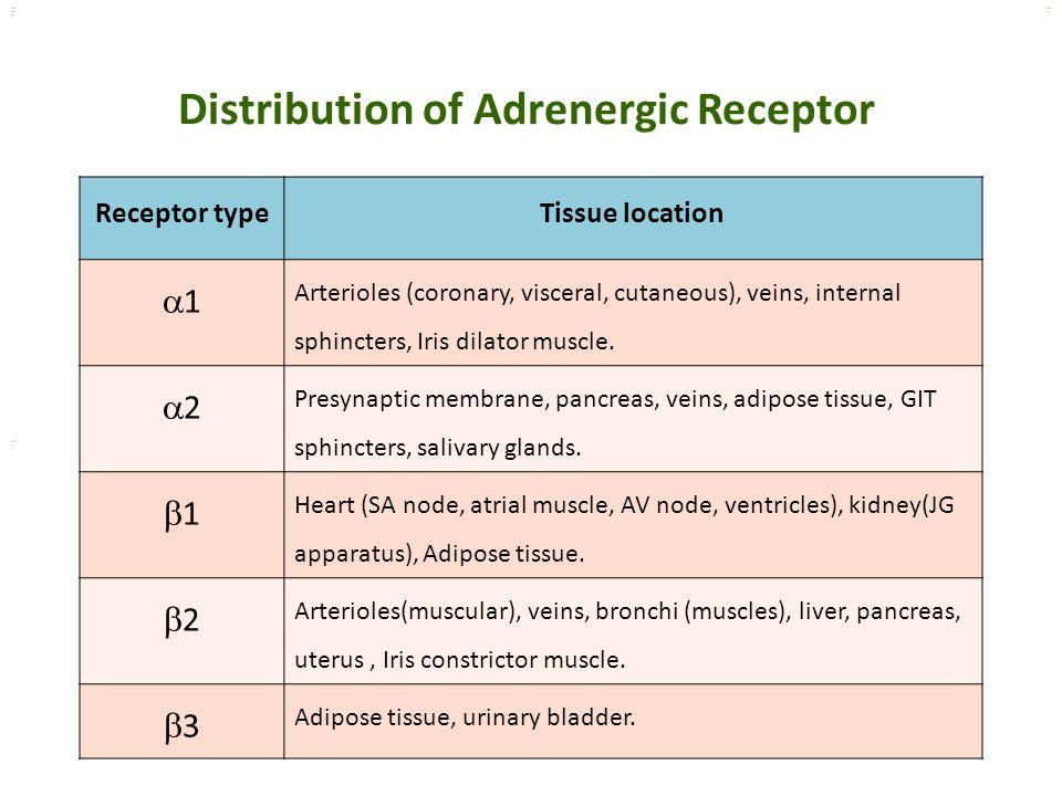 Kuls oo m Receptor typeTissue location 11 Arterioles (coronary, visceral, cutaneous), veins, internal sphincters, Iris dilator muscle. 22 Presynap