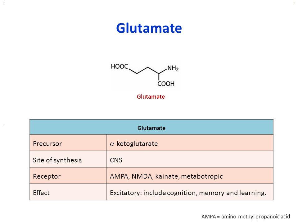 Kuls oo m Glutamate Precursor  -ketoglutarate Site of synthesisCNS ReceptorAMPA, NMDA, kainate, metabotropic EffectExcitatory: include cognition, mem