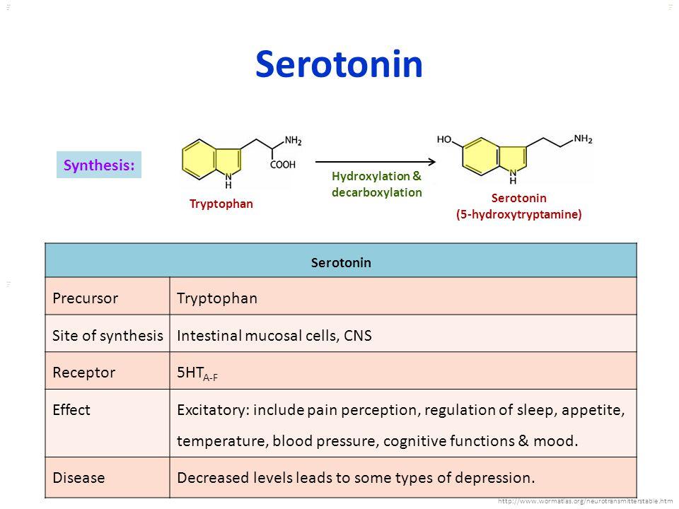 Kuls oo m Hydroxylation & decarboxylation Tryptophan Serotonin (5-hydroxytryptamine) Synthesis: Serotonin PrecursorTryptophan Site of synthesisIntesti