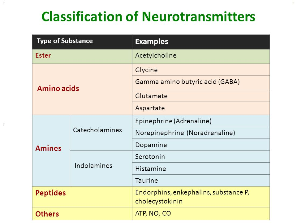 Kuls oo m Classification of Neurotransmitters Type of Substance Examples EsterAcetylcholine Amino acids Glycine Gamma amino butyric acid (GABA) Glutam