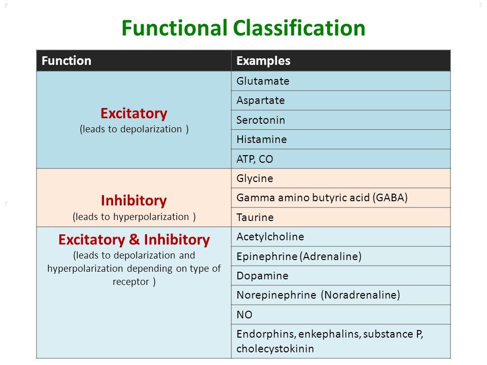 Kuls oo m Functional Classification FunctionExamples Excitatory (leads to depolarization ) Glutamate Aspartate Serotonin Histamine ATP, CO Inhibitory