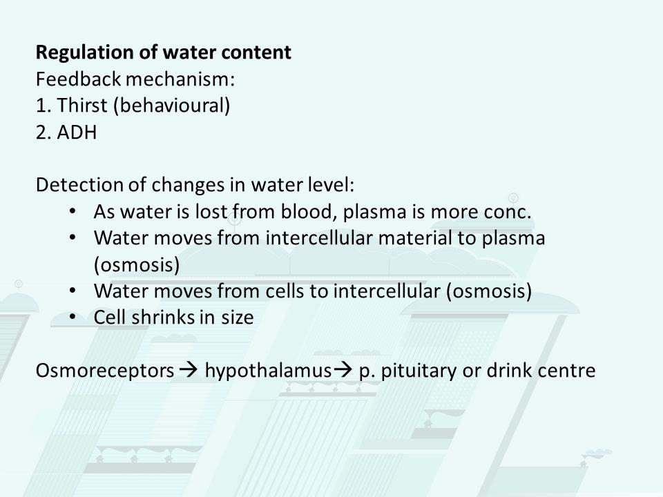 Stimulus Increased osmotic pressure of blood (low water conc) Receptor / Modulator Osmoreceptors in hypothalamus Effector P.