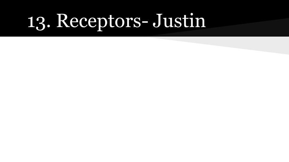 13. Receptors- Justin
