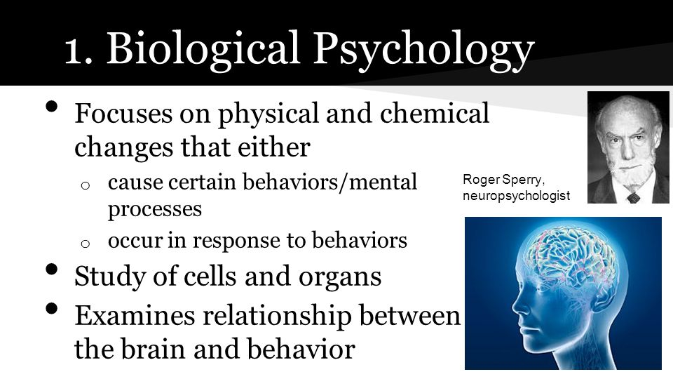 Focuses on physical and chemical changes that either o cause certain behaviors/mental processes o occur in response to behaviors Study of cells and or