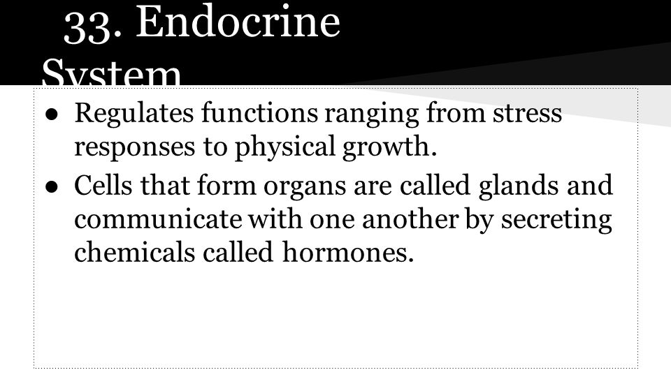 33. Endocrine System ●Regulates functions ranging from stress responses to physical growth. ●Cells that form organs are called glands and communicate