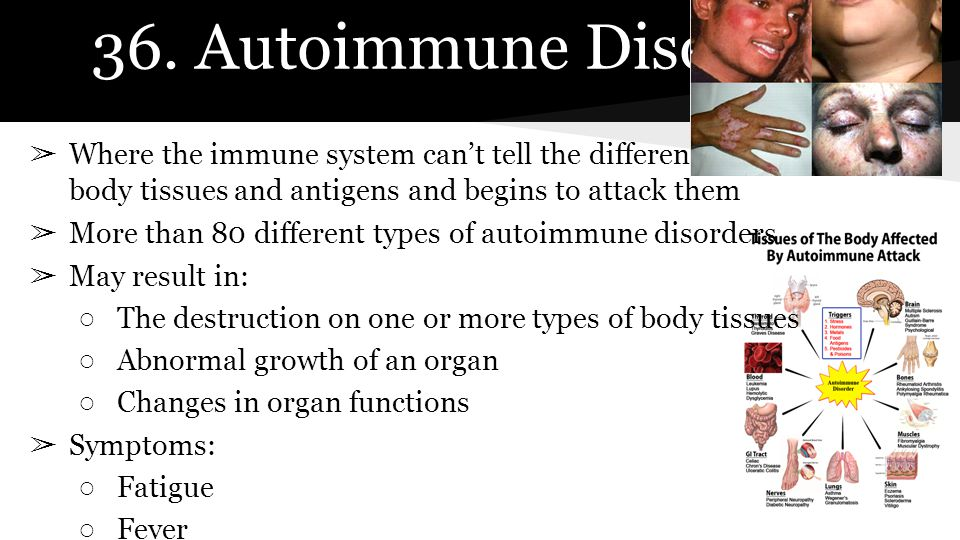 36. Autoimmune Disorder ➢ Where the immune system can't tell the difference between healthy body tissues and antigens and begins to attack them ➢ More