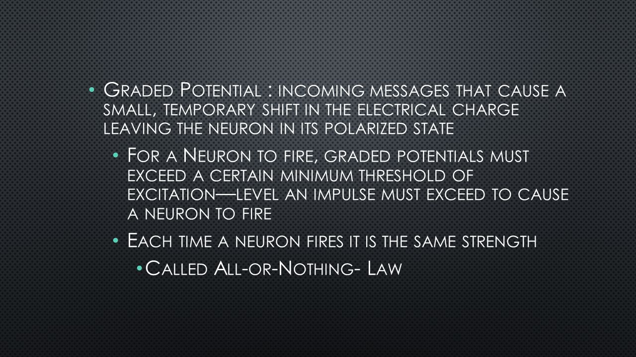 G RADED P OTENTIAL : INCOMING MESSAGES THAT CAUSE A SMALL, TEMPORARY SHIFT IN THE ELECTRICAL CHARGE LEAVING THE NEURON IN ITS POLARIZED STATE F OR A N EURON TO FIRE, GRADED POTENTIALS MUST EXCEED A CERTAIN MINIMUM THRESHOLD OF EXCITATION — LEVEL AN IMPULSE MUST EXCEED TO CAUSE A NEURON TO FIRE E ACH TIME A NEURON FIRES IT IS THE SAME STRENGTH C ALLED A LL - OR -N OTHING - L AW