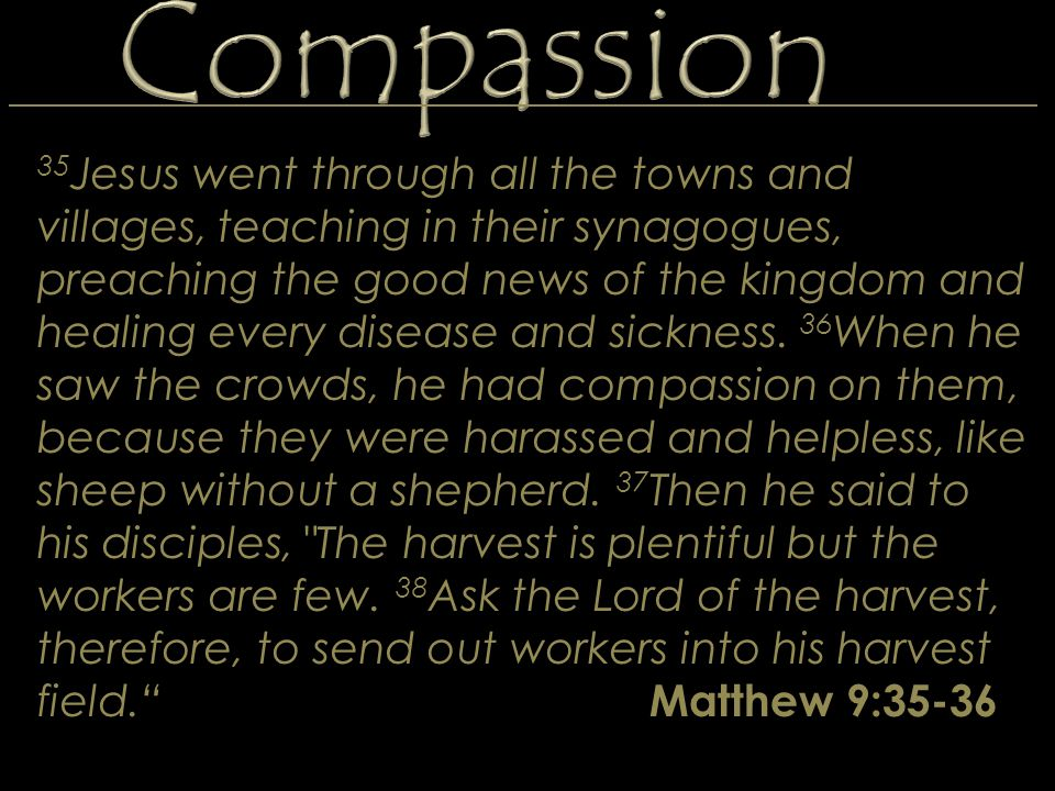 35 Jesus went through all the towns and villages, teaching in their synagogues, preaching the good news of the kingdom and healing every disease and s