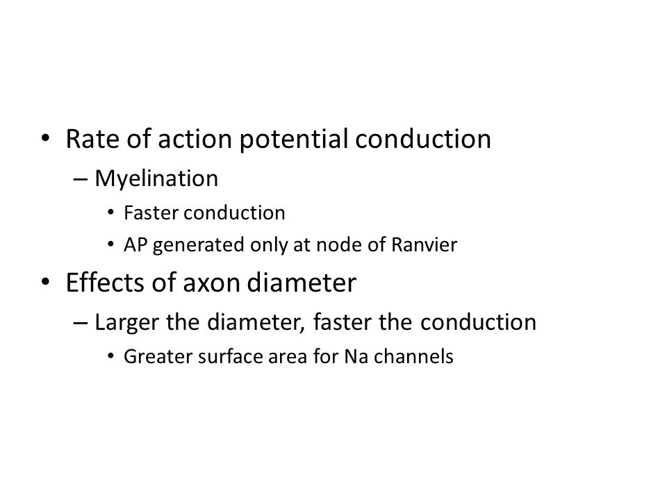 Rate of action potential conduction – Myelination Faster conduction AP generated only at node of Ranvier Effects of axon diameter – Larger the diameter, faster the conduction Greater surface area for Na channels
