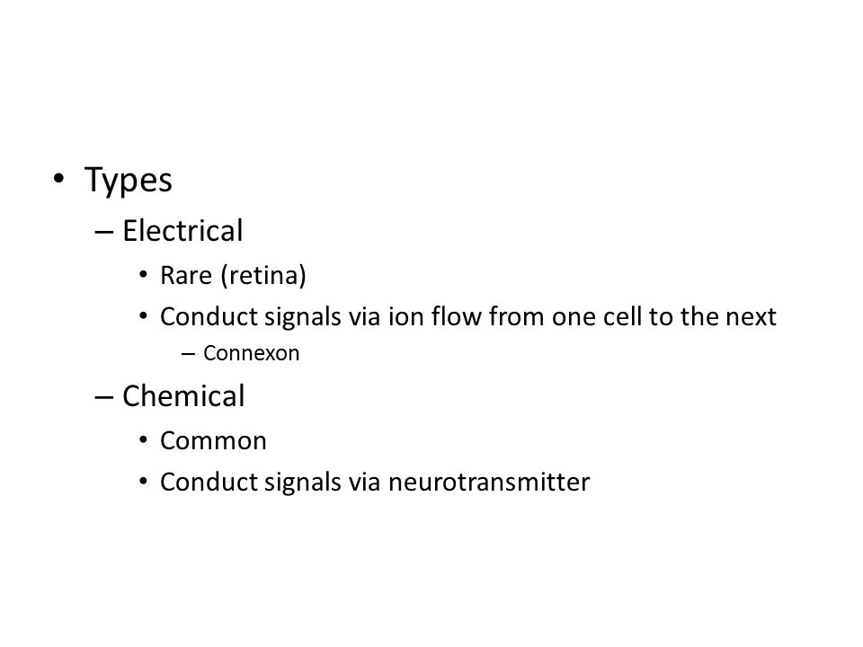 Types – Electrical Rare (retina) Conduct signals via ion flow from one cell to the next – Connexon – Chemical Common Conduct signals via neurotransmitter